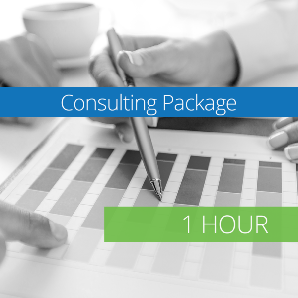 Consulting Package - 1 Hour